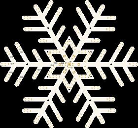 NeoPixel SnowFlake